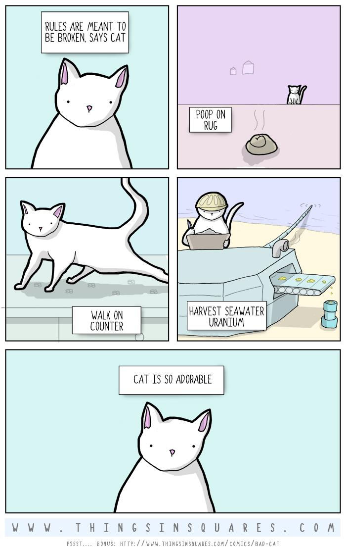 Bad cat. Cat poop on rug. Cat walk on counter. Cat harvest uranium from seawater. Cat so adorable.