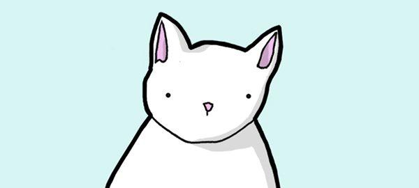 featured-bad-cat